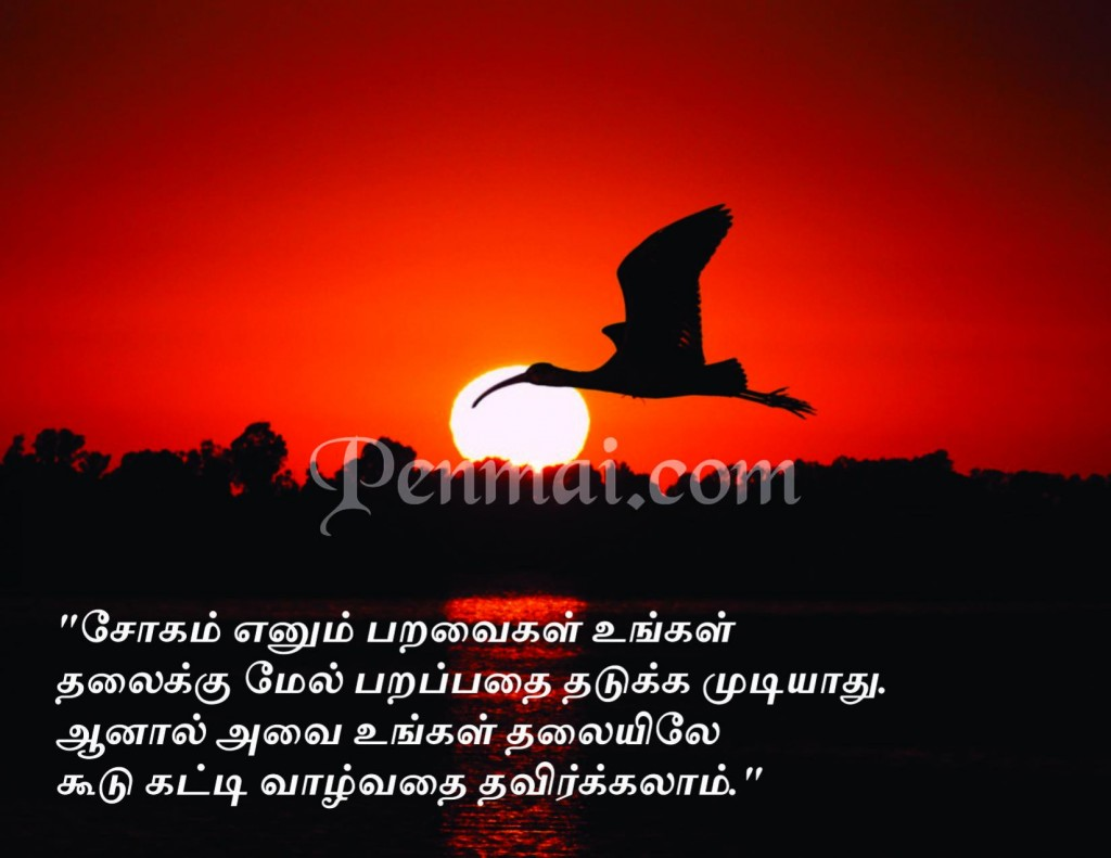 tamil motivational quotes 3 penmai