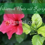 Hibiscus Hair Oil Recipe